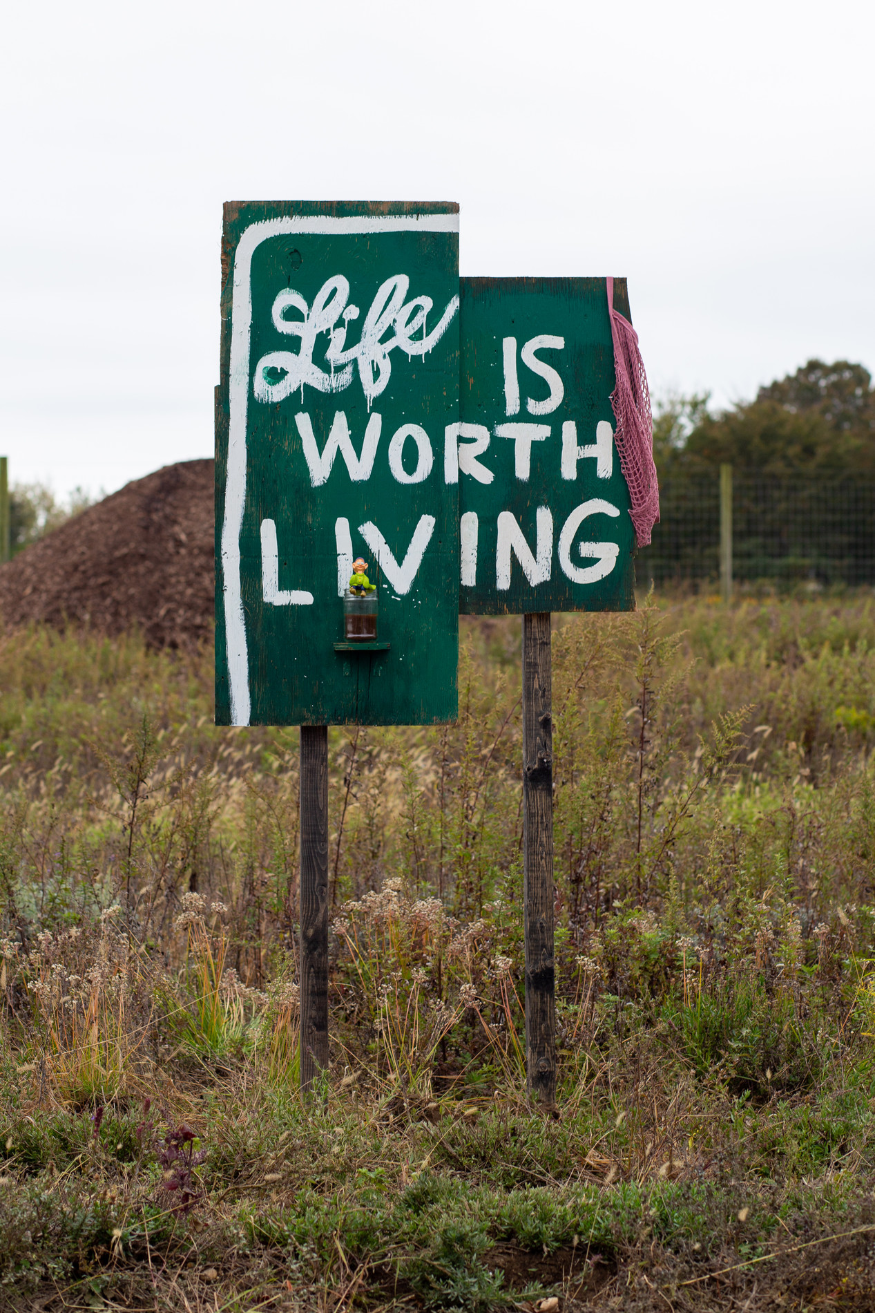 """Andrea McGinty, """"Life is Worth Living"""", 2019."""