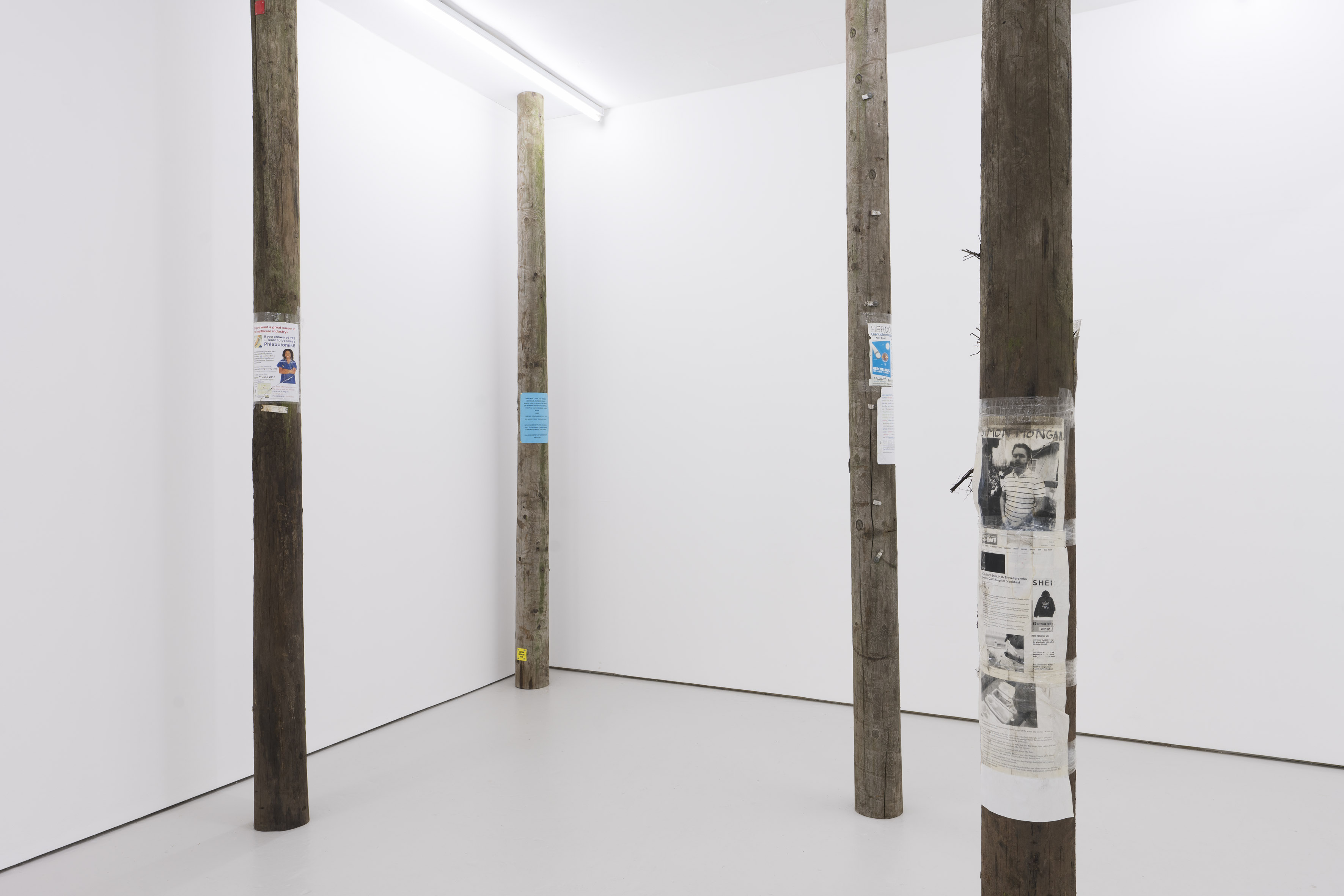 Installation view. Courtesy the artists and Carlos/Ishikawa, London.